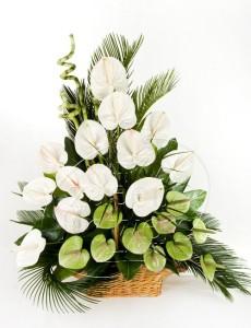خرید تاج گل و سفارش تاج گل