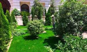 چمن مصنوعی در حیاط