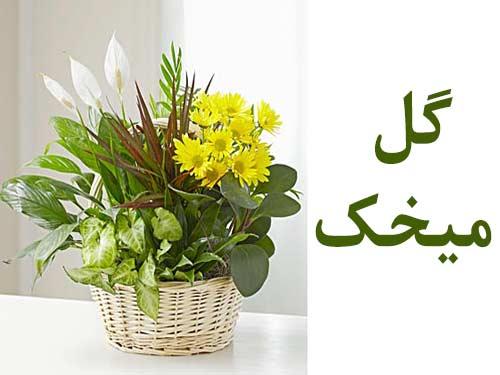 تاج گل گل فروشی