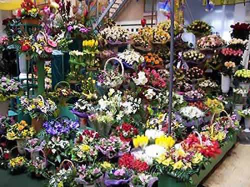 گل فروشی گلستان امام رضا