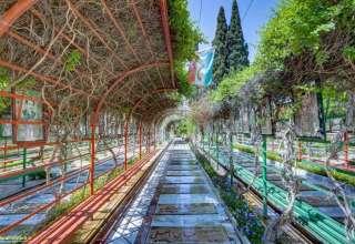 اطلاعات تماس با آرامستان دارالرحمه گورستان شیراز